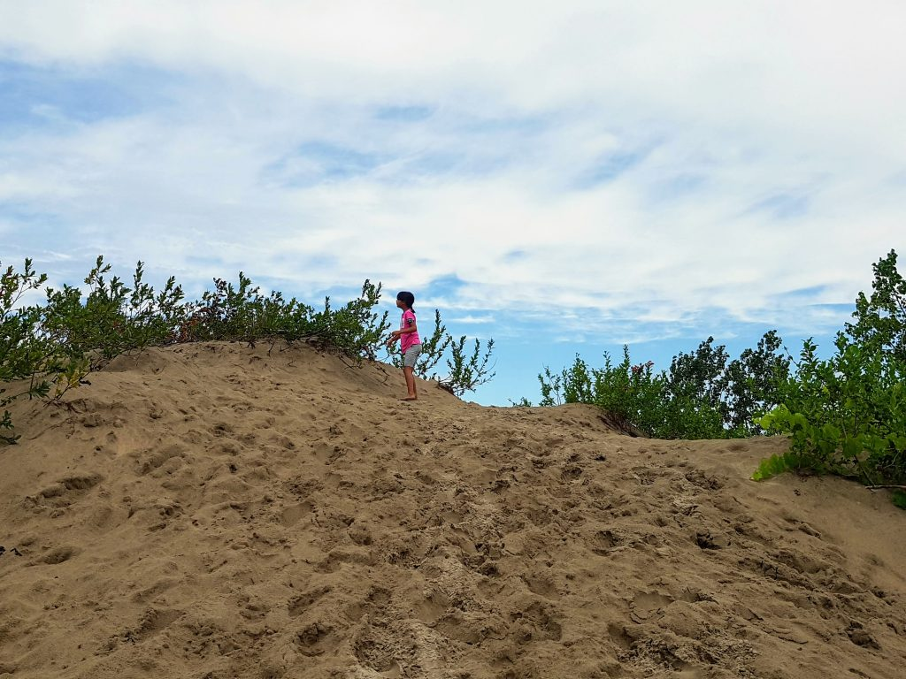 On top of the hills of the Dunes